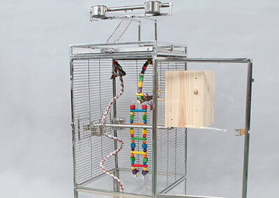 importance-of-parrot-cages
